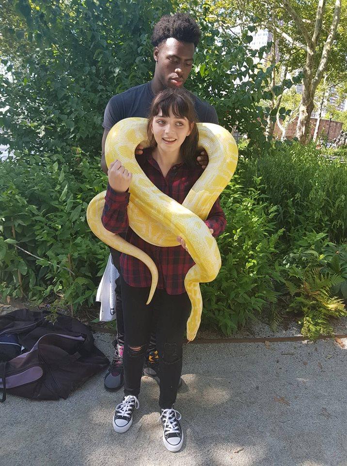 Hana and the snake